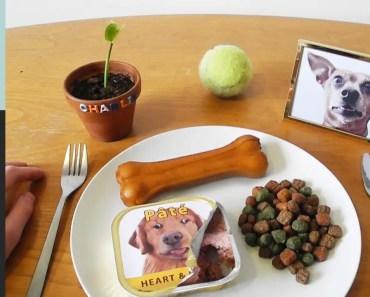 Eating DOG FOOD!!! Kluna Tik Dinner #40 | ASMR eating sounds no talk - eating dog food kluna tik dinner 40 asmr eating sounds no talk