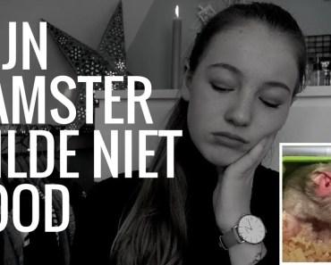 MIJN HAMSTER WILDE MAAR NIET DOOD... #StoryTime - mijn hamster wilde maar niet dood storytime