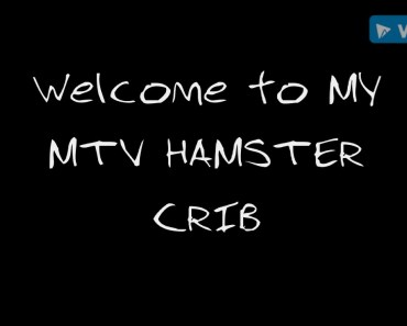 MTV HAMSTER CRIB (Human voice over *Funny*) - mtv hamster crib human voice over funny