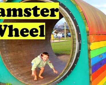 PLAYGROUND Best Kids Park BIG HAMSTER WHEEL & Kids Playing Win toys - playground best kids park big hamster wheel kids playing win toys