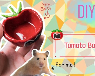 DIY | How To Make A Kirby Tomato Hamster Bowl - diy how to make a kirby tomato hamster bowl