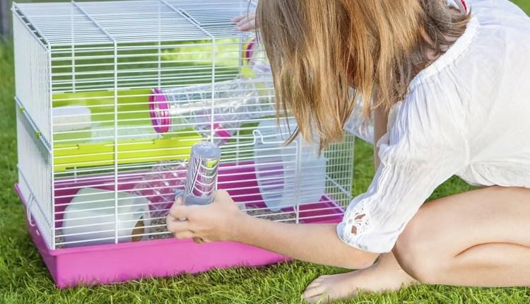 Hamster Starter Kit - Choosing a complete hamster starter kit