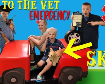 Trouble at the Vet! Family Fun Pack Playtime Skit - trouble at the vet family fun pack playtime skit