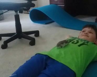 Hamster tickle challenge - hamster tickle challenge