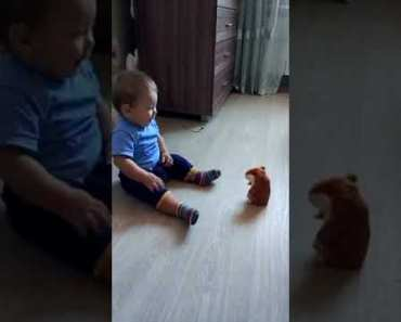 Baby scared of talking hamster toy ||Just for laughs - baby scared of talking hamster toy just for laughs