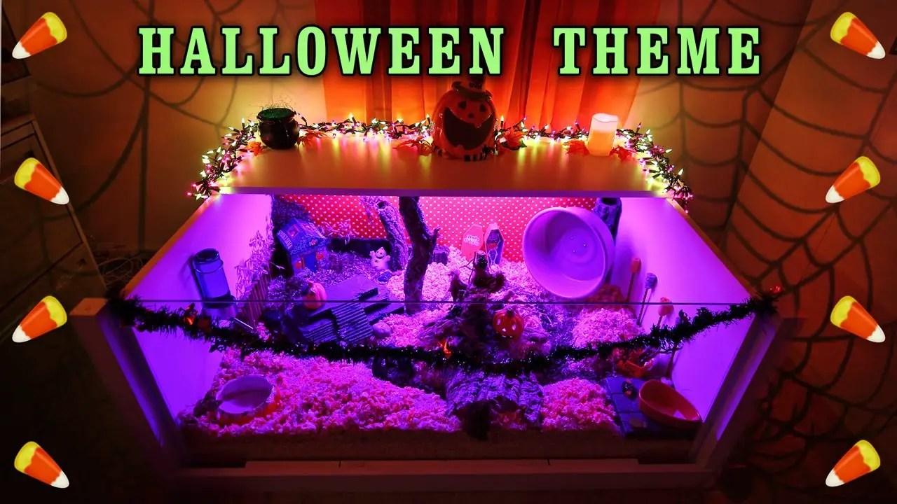 Carob's HALLOWEEN Hamster Cage Theme! - Hamster Care Sheet
