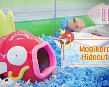 DIY | Pokemon Magikarp Hamster House - diy pokemon magikarp hamster house