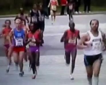 funny race. hamster dance music - funny race hamster dance music
