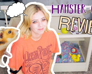 Hamster Cage Review | My Thoughts | ecoFLEX Small Animal Hutch - hamster cage review my thoughts ecoflex small animal hutch
