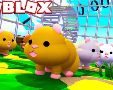 ROBLOX HAMSTER SIMULATOR! (BECOME A REALISTIC HAMSTER) - roblox hamster simulator become a realistic hamster