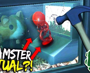SECRET HAMSTER RITUAL?! (breaking the glass?!) Please, Don't Touch Anything 3D VR #2 - secret hamster ritual breaking the glass please dont touch anything 3d vr 2