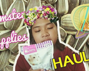 HAMSTER SUPPLIES HAUL! - hamster supplies haul