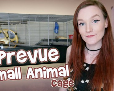 Setting up my Syrian Hamster Cage | Petvue 528 Small Animal Cage | UNBOXING! - setting up my syrian hamster cage petvue 528 small animal cage