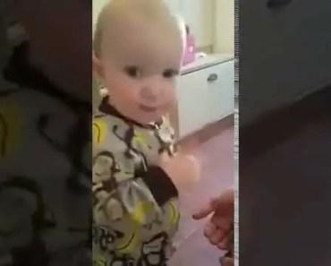 Baby tries to eat hamster!! - baby tries to eat hamster