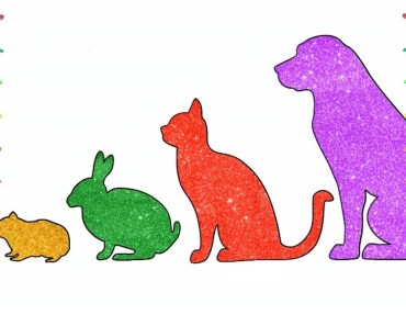 Drawing & Coloring Glitter, Hamster, Bunny, Cat, Dog, Art for Kids | Colors Box - drawing coloring glitter hamster bunny cat dog art for kids colors