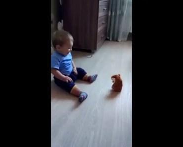 funny baby vs hamster - funny baby vs hamster
