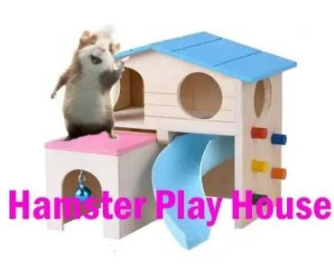 HAMSTER PLAY HOUSE !!!!!!!!!!!!!!!!!!!!!!!!!!!!!!!!!!!!!!!!!!!!!!!!!!!!!!!!!!!!!!!!!!!!!!!!! - hamster play house