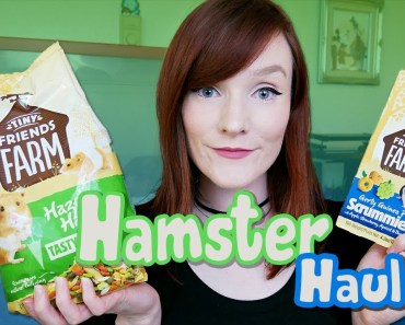 Hamster Supply Haul | Local Pet Shop! - hamster supply haul local pet shop