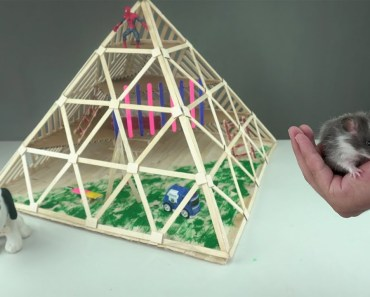 How to Make Popsicles Stick Pyramid House for Hamster Mouse - how to make popsicles stick pyramid house for hamster mouse