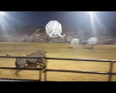 Knocker ball Bullball Soccer Rodeo / Extreme sport / Najlepsze filmiki / Failboomb - knocker ball bullball soccer rodeo extreme sport najlepsze filmiki failboomb