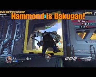 Overwatch - Hamster Memes & Funny Moments - overwatch hamster memes funny moments
