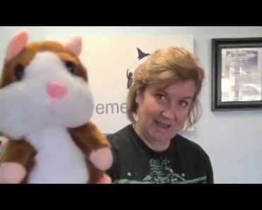 Talking Hamster to Encourage Speech - talking hamster to encourage speech