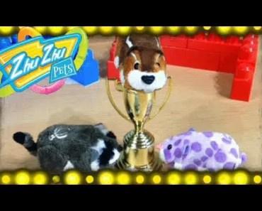 Zhu Zhu Soccer! Zhu Zhu Pets Toys Play Funny Soccer Game - zhu zhu soccer zhu zhu pets toys play funny soccer game