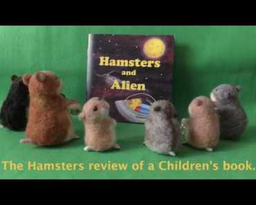 """Funny!!! The Hamsters review of children's book """"Hamsters and Alien"""". - 1595336574 hqdefault"""