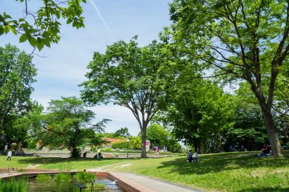 園内の写真