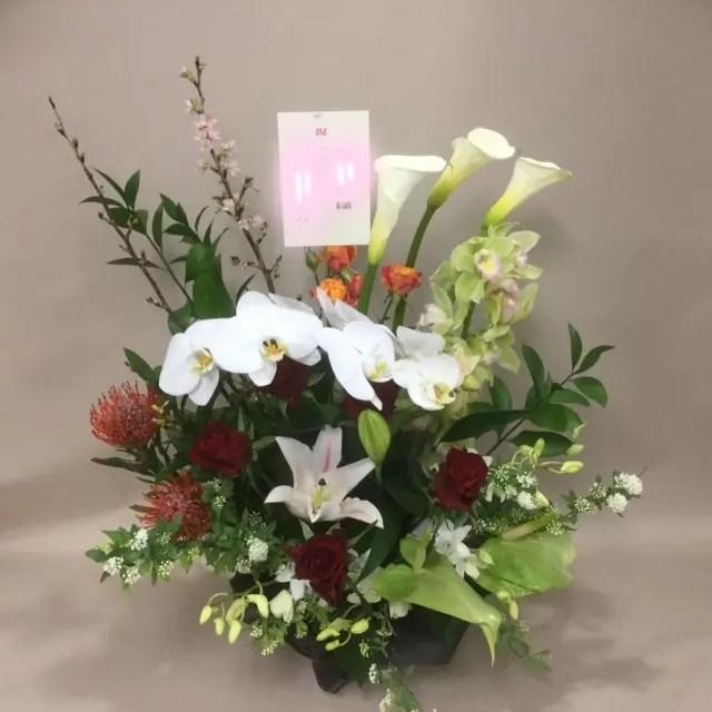 日々の花 - HANABUN(花文)
