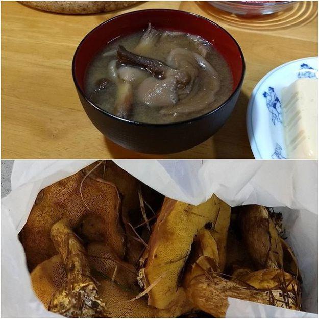 お隣さんから採れたてキノコを沢山頂きました。落葉キノコって言うらしいです。下ごしらえは母親にお願いして、お味噌汁で頂きました。山で採ったキノコなんておそらく初めて?の試練だった子供達もちゃんと味わって食べてました。阿武咲おめでとう!