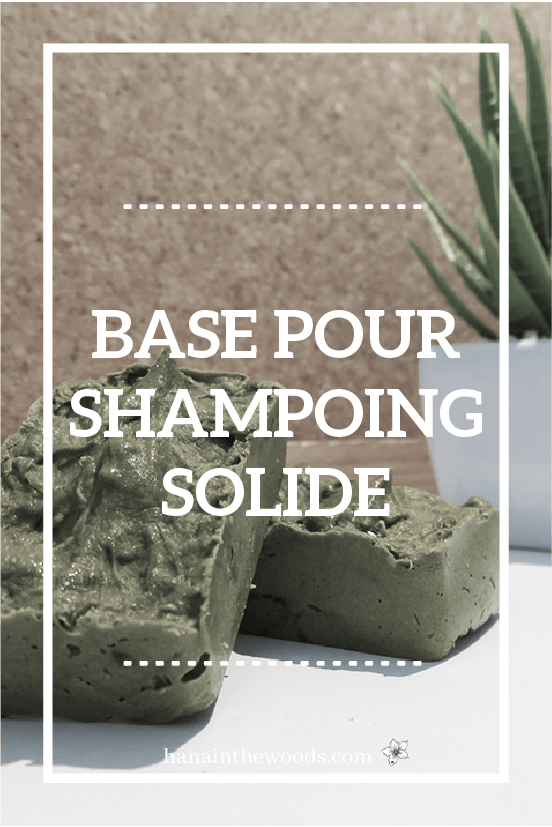 Base pour shampoing solide