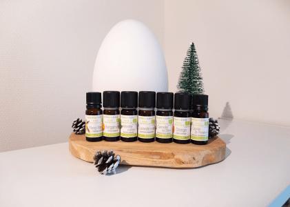 Quelles synergies d'huiles essentielles diffuser dans sa maison en hiver ?