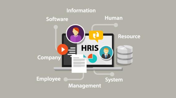 Tips memilih software HRIS yang tepat untuk start-up