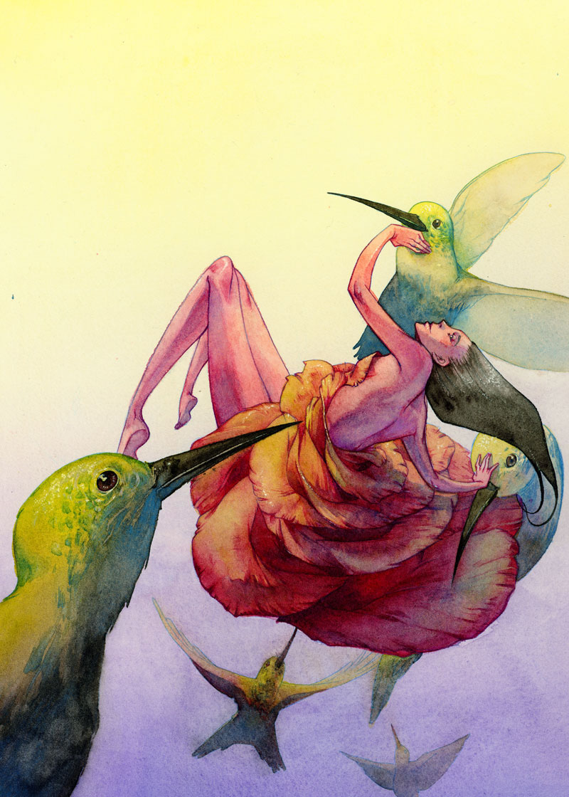 hp_2010_hummingbird.jpg?fit=800%2C1120