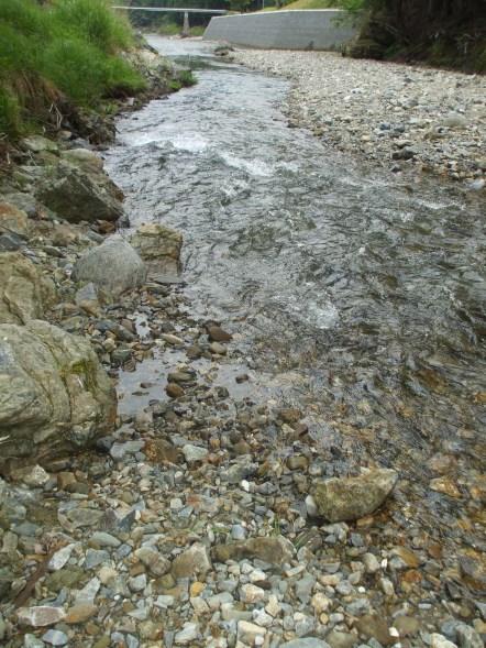 Outside - Katsura River 5