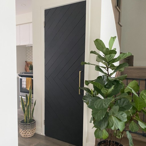 A black modern door with a fig tree