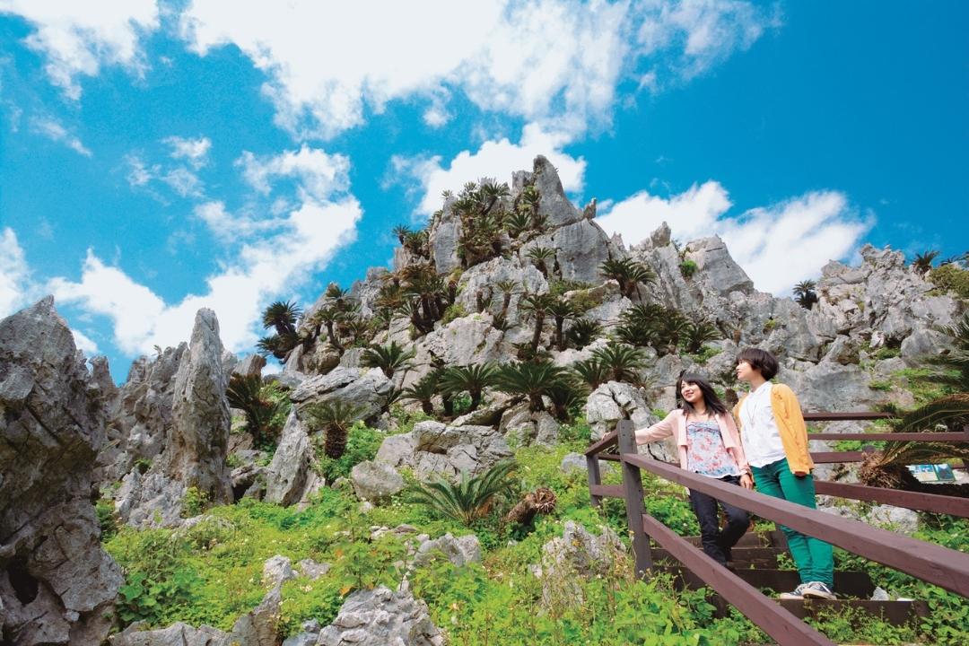 Daiseikirinzan, Okinawa (HNT)
