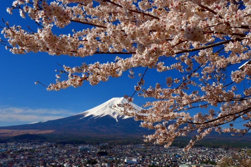Fuji Five Lakes (Canva)
