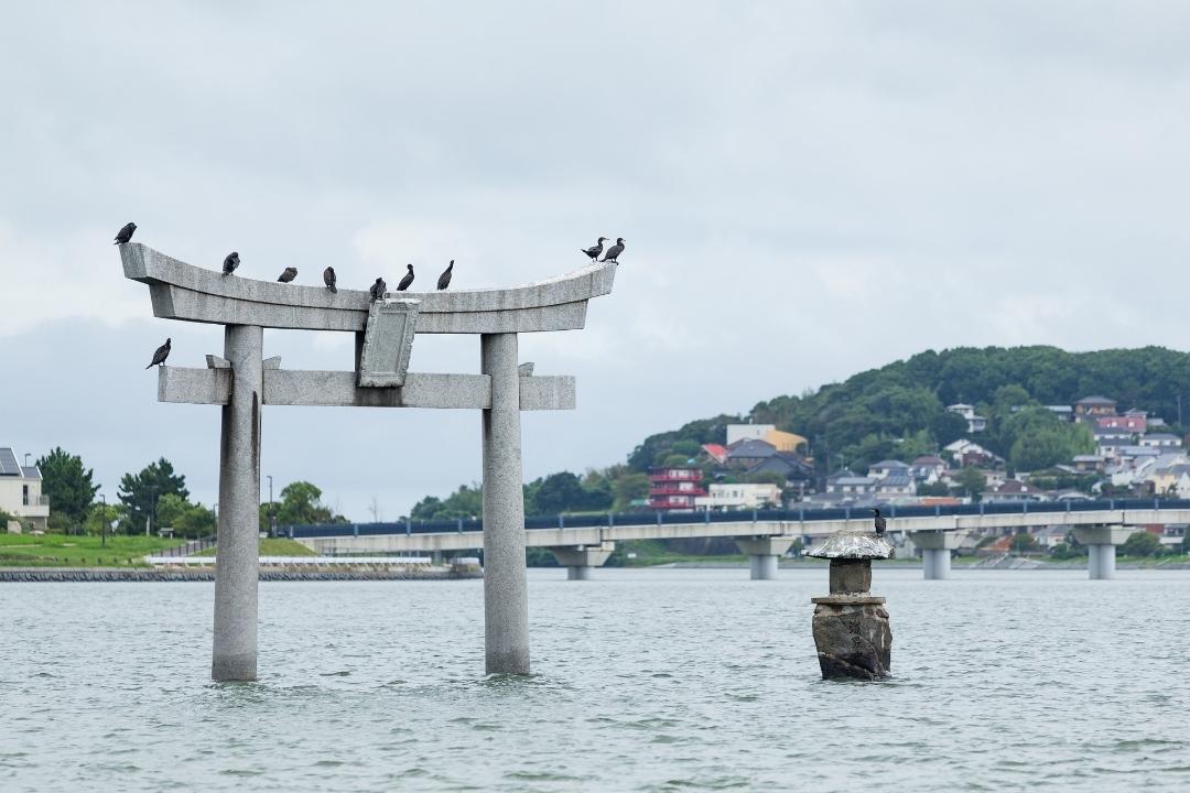 Stone Torii in Fukuoka City (CANVA)