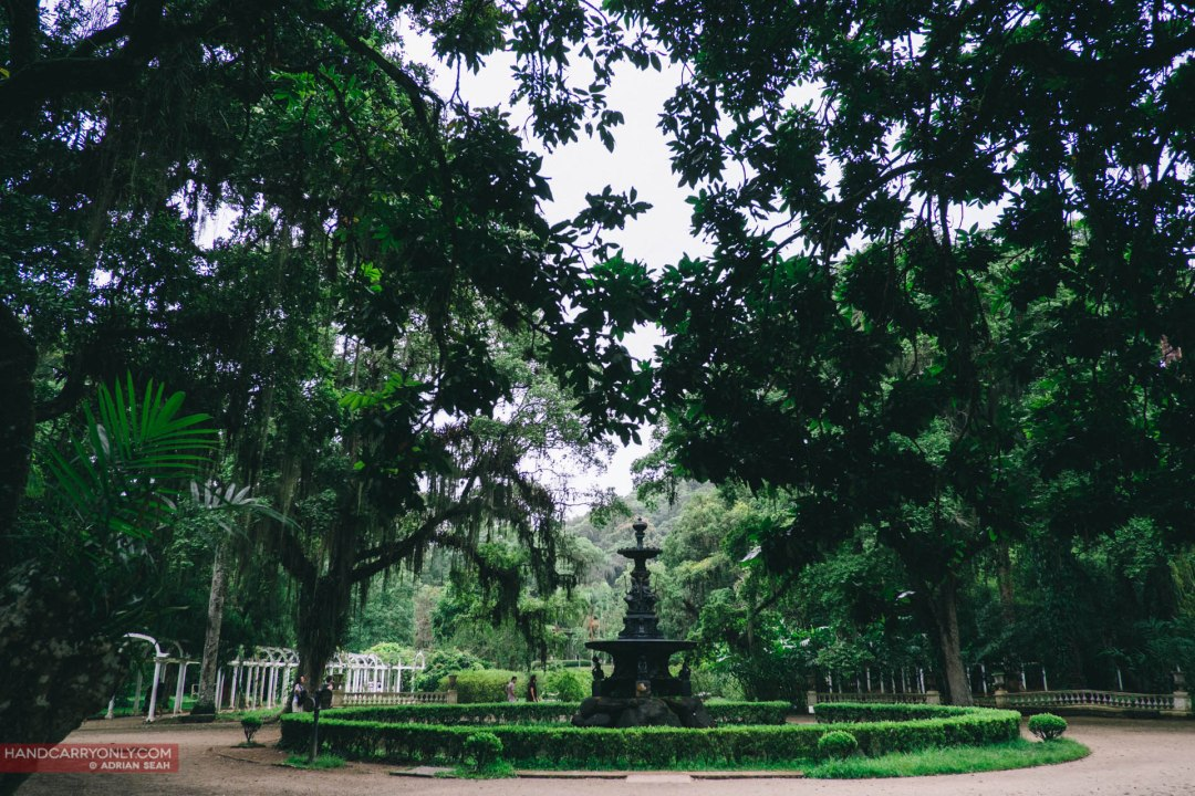Jardim Botanico was founded in 1808 by John VI of Portugal and is protected as a UNESCO biosphere reserve.