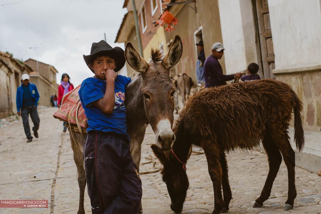 boy and donkey, tarabuco sunday market, bolivia