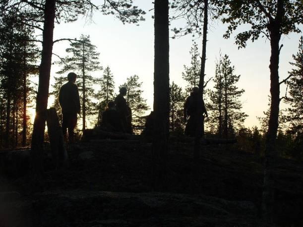 paus i solnedgången
