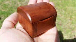 Photo close up of a small red gum broach box