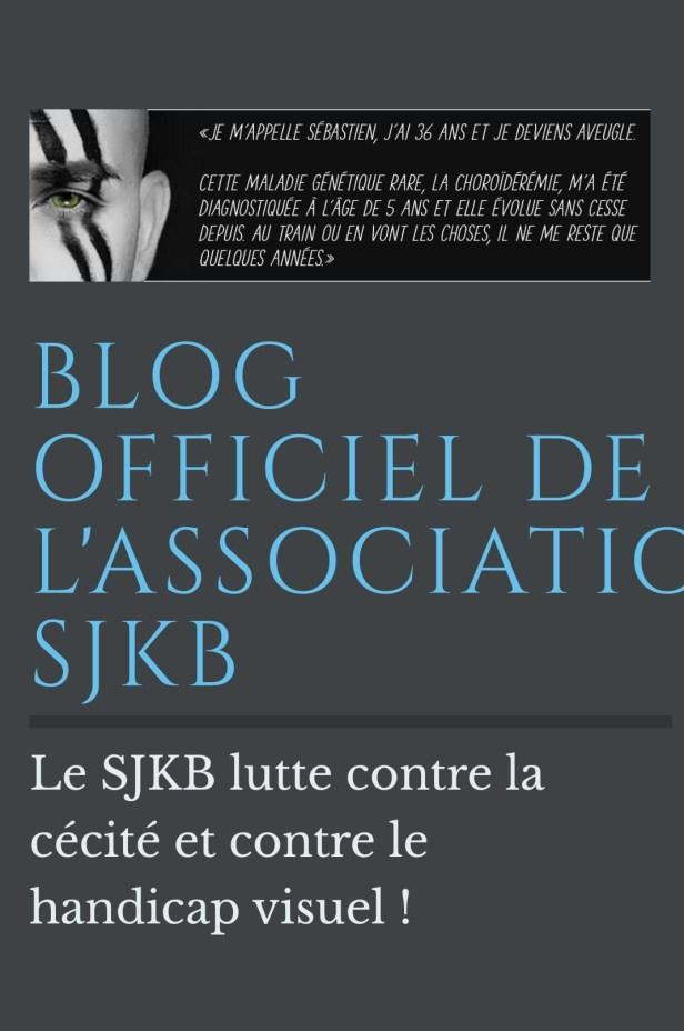 Écran du blog de l'association sjkb