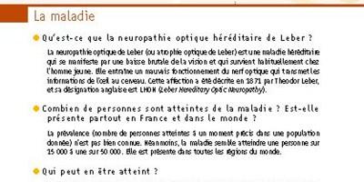 image de la fiche Neuropathie Optique Héréditaire de Leber Orphanet