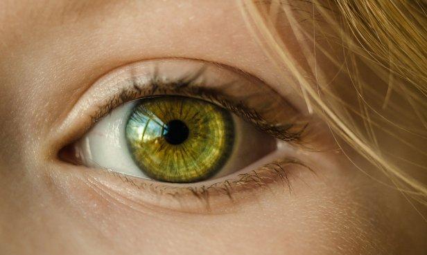 photo en gros plan d'un oeil vert