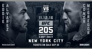 MMA Fighting at UFC 205