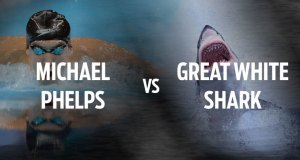 Michael Phelps vs. Great White Shark 6
