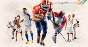 Sportsbook Services at PayPerHead 247